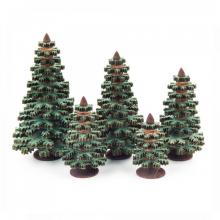 Nadelbäume 4-8cm 5teilig sortiert
