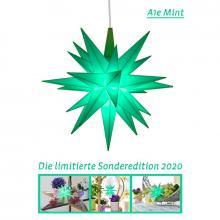 Herrnhuter Stern Kunststoff 13cm mint | Sonderedition 2020 Collage