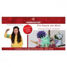Herrnhuter Stern Kunststoff 13cm mint | Sonderedition 2020 Flyer Sternenkind