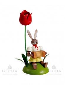 Blank Osterhase sitzend mit Tulpe und Harmonika